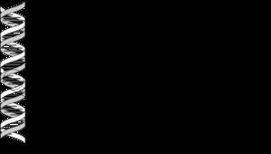 __201507